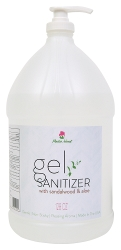 Gel Hand Sanitizer (case)