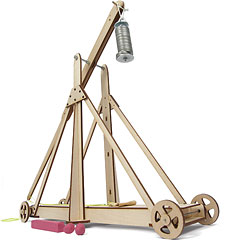 Large Trebuchet Demonstrator
